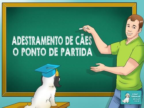 Adestramento-de-Cães-ComoTreinarUmCao.com_.br_