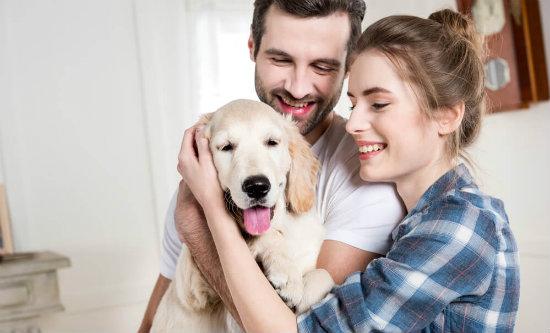 Familia com cachorro